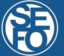 SEFO - Scuola d'Eccellenza nella Formazione Osteopatica